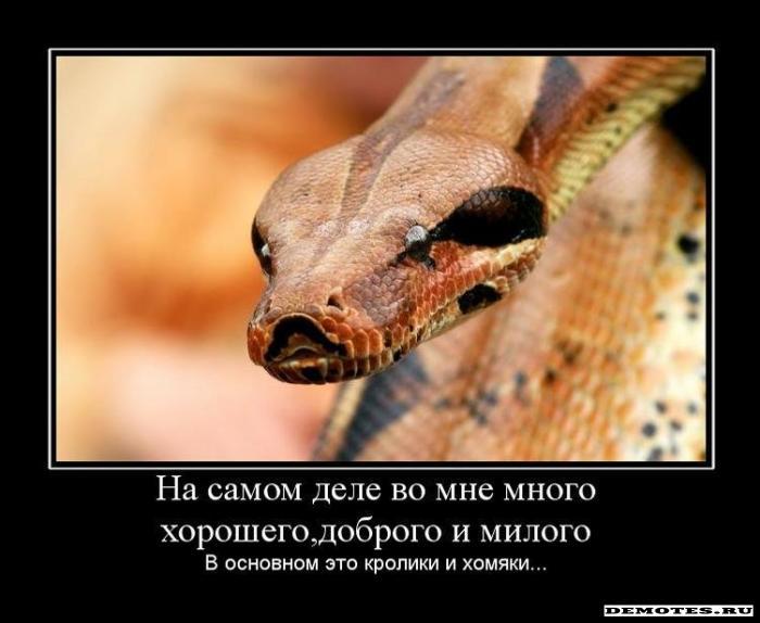 http://demotes.ru/uploads/posts/2010-04/thumbs/1270466630_1na-samom-dele-vo-mne-mnogo-horoshegodobrogo-i-milogo.jpeg