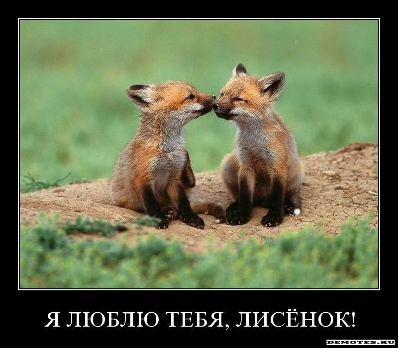 Фотошоп онлайн на русском языке бесплатно, фотошоп ...