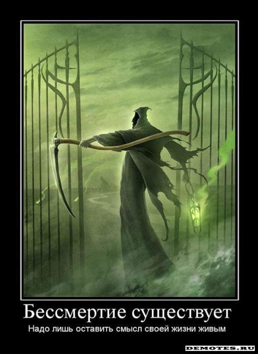Погоня за бессмертием!