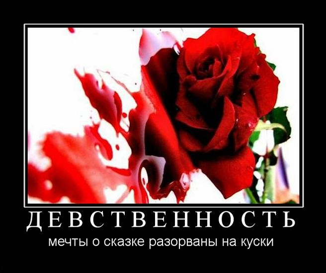 http://demotes.ru/uploads/posts/2010-10/1288421486_d-e-v-s-t-v-e-n-n-o-s-t-.jpg