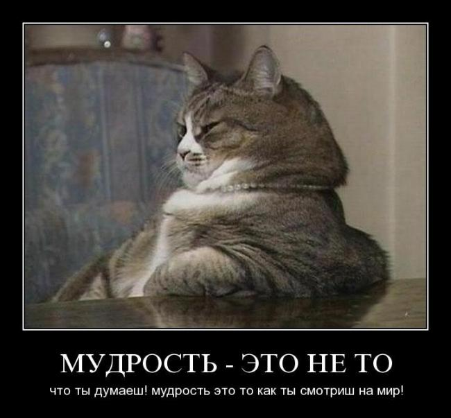 http://demotes.ru/uploads/posts/2010-10/thumbs/1287500102_t6e2m2mc4ogh.jpg