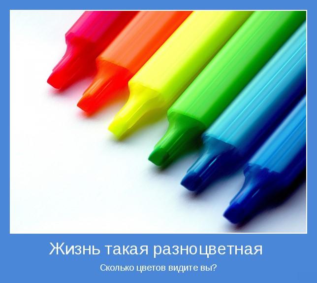 Жизнь такая разноцветная