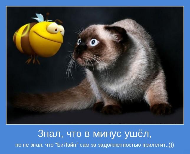 http://demotes.ru/uploads/posts/2010-11/1288987457_motivator.jpg