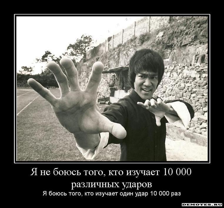 Я не боюсь того, кто изучает 10 000 различных ударов - Я боюсь ...