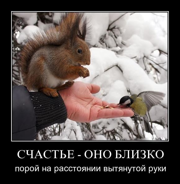 http://demotes.ru/uploads/posts/2011-03/1300050583_zil86wugi3jr.jpg