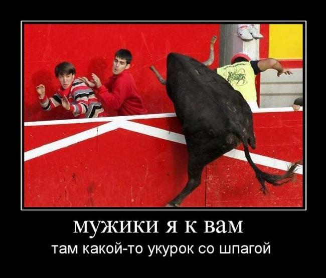 http://demotes.ru/uploads/posts/2011-04/thumbs/1302707812_muzhiki-ya-k-vam-.jpg