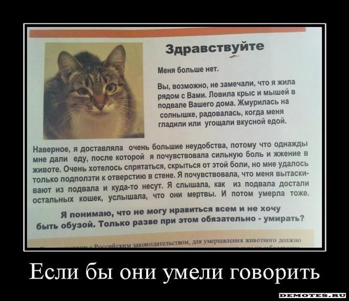 http://demotes.ru/uploads/posts/2011-08/1312929477_1esli-byi-oni-umeli-govorit.jpeg