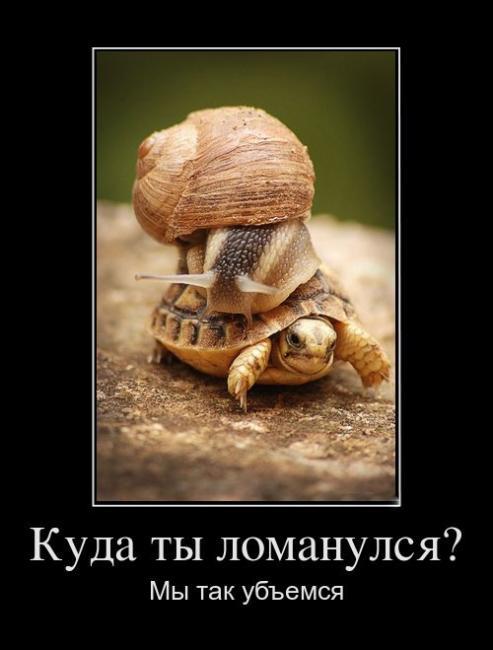 http://demotes.ru/uploads/posts/2011-10/thumbs/1318756552_kuda-tyi-lomanulsya.jpg