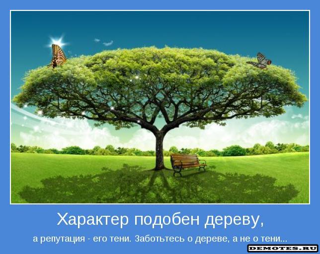 Характер подобен дереву, а репутация - его тени. Заботьтесь о дереве, а не о тени...