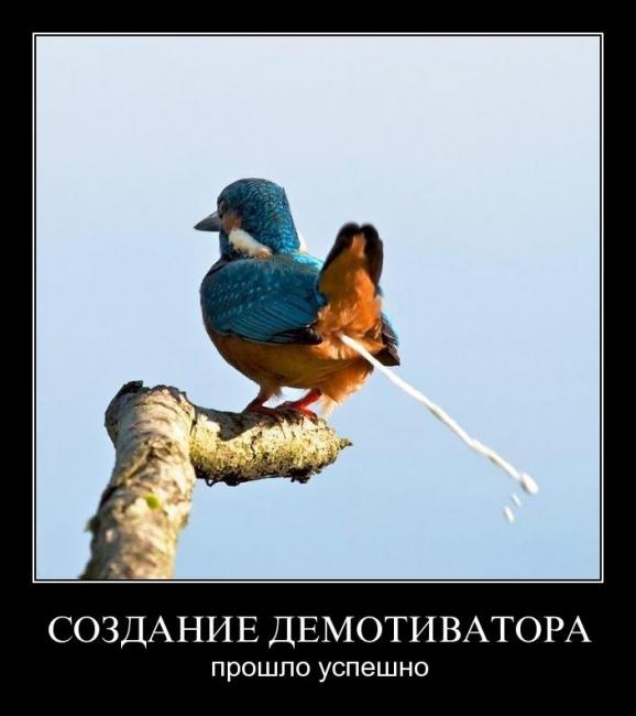 http://demotes.ru/uploads/posts/2012-05/thumbs/1336624628_m24j5qu38rzs.jpg